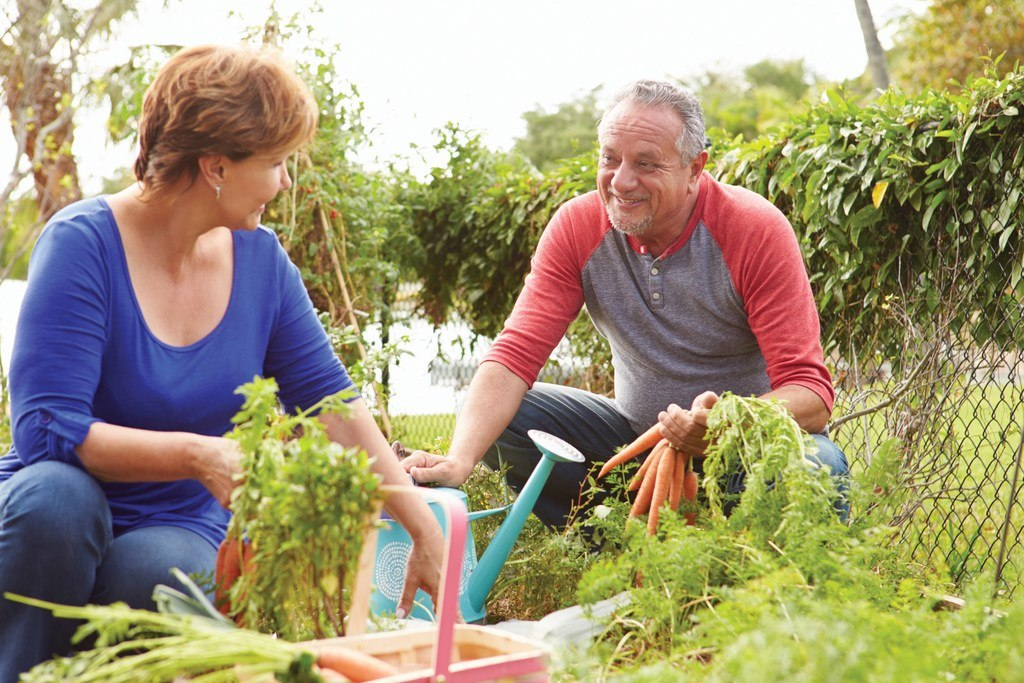 Couple starting a garden together as a new hobby